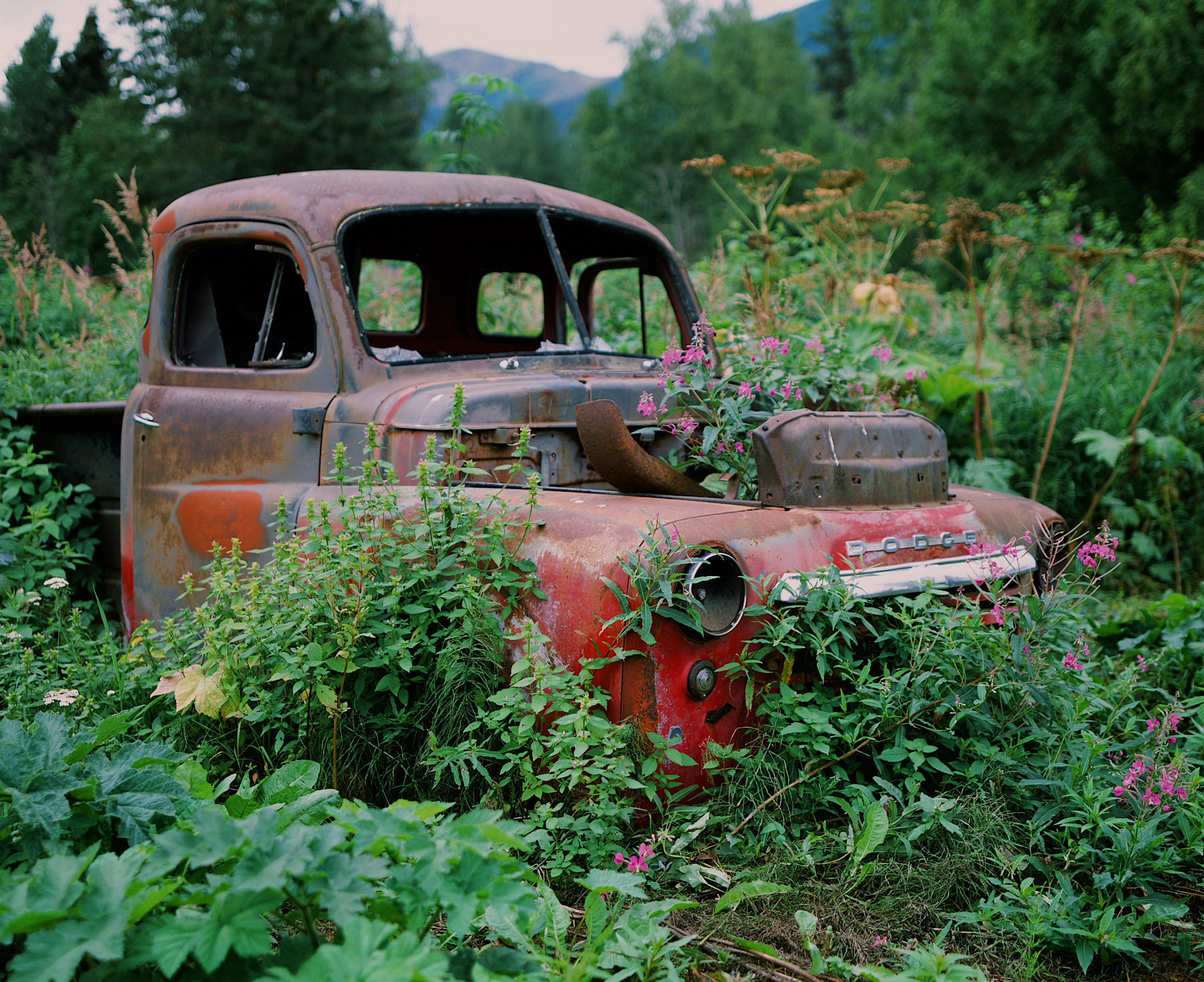 Old Truck in Hope Alaska