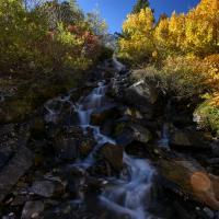 Fall Colors by frontosa in frontosa