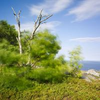 Mount Battie, Camden Me by Shashin in Regular Member Gallery