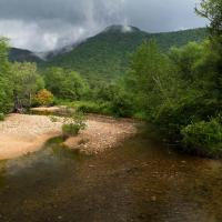 Crawford Notch, White Mountain National Forrest. by Shashin in Regular Member Gallery