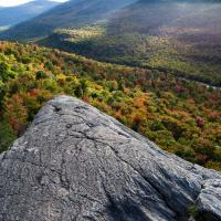 Pinkham Notch Foliage by Shashin in Regular Member Gallery