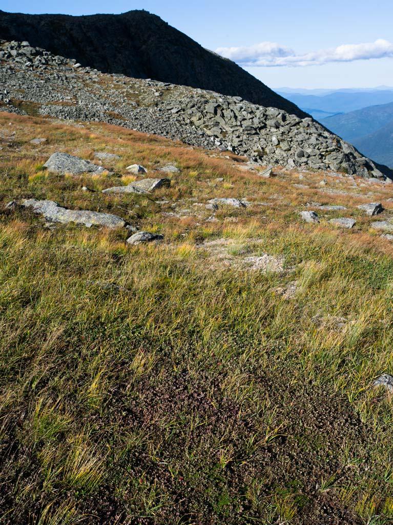Slopes Of Mt. Washington, Nh