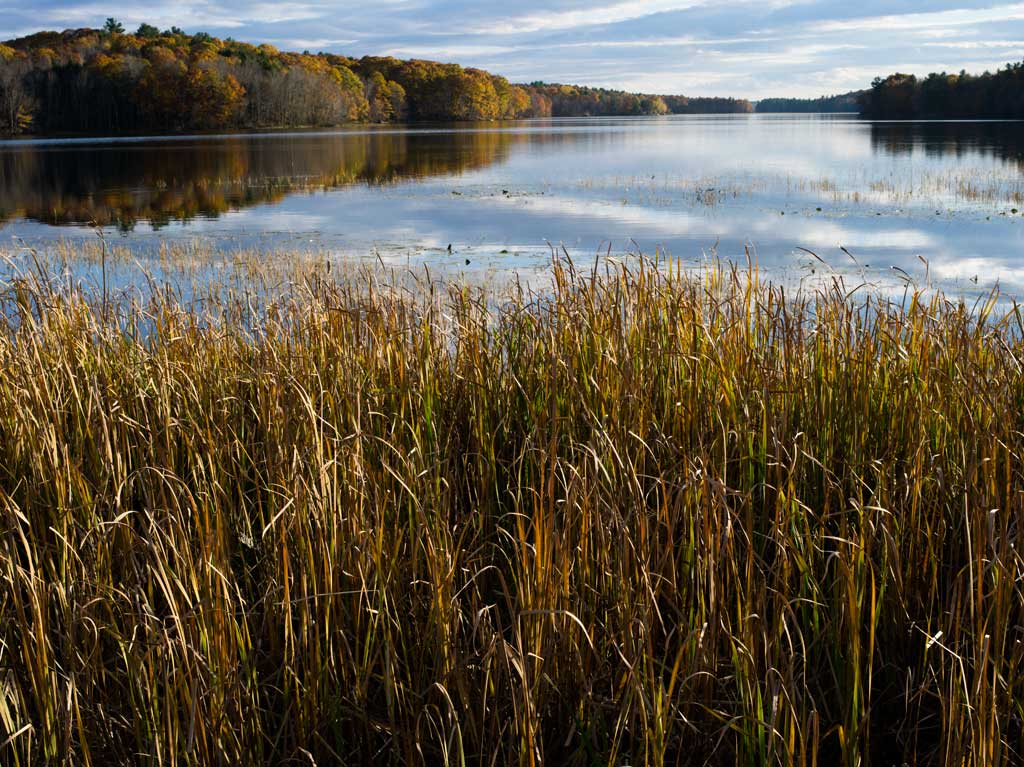 Pleasant Pond, Litchfield, Me by Shashin in Regular Member Gallery