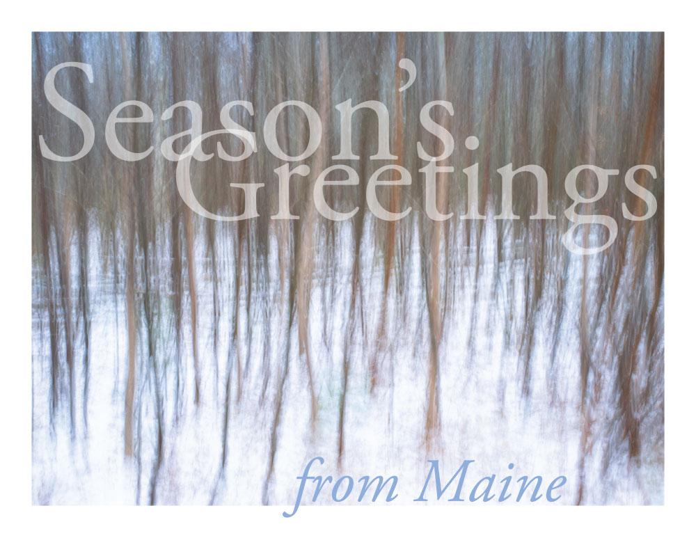 Season's Greetings by Shashin in Regular Member Gallery