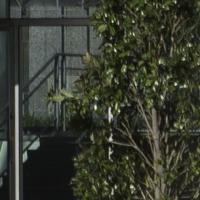 A7ii Dallas Cityscape by mesposito in Regular Member Gallery
