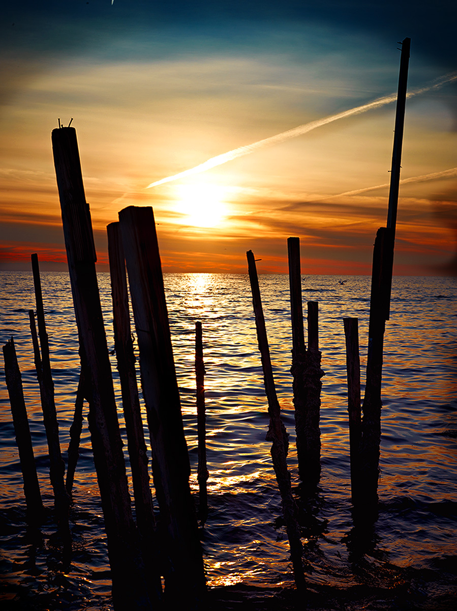 Sticks At Sunrise by sbaze in Landscape
