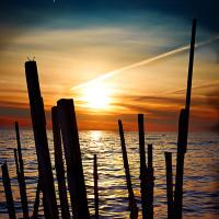 Sticks At Sunrise by sbaze in Landscape