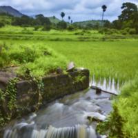 Pinhole landscape by Shreyas