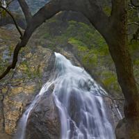 Dudsagar Falls Goa India by Shreyas in Regular Member Gallery