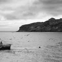 Fishing Boat Off Howth, Dublin by jctodd