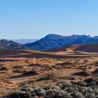5 Shot Pink Sand Dunes by Guy Mancuso in Guy Mancuso