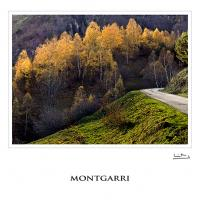 Montgarri by jeb1_es in Regular Member Gallery