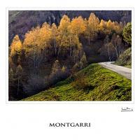 Montgarri by jeb1_es in Regular Member Gallery