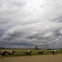 Thoroughbred Racing by hdrmd in Regular Member Gallery