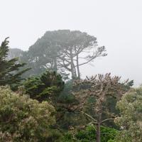 Daly City - Fog by GrahamWelland in GrahamWelland