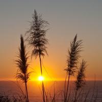 Sonoma Sunset by GrahamWelland in GrahamWelland