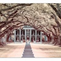 Oak-alley-plantation-ir-1k-framed by GrahamWelland in Regular Member Gallery