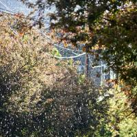 Spring Showers by GrahamWelland