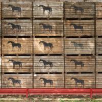 Horses by GrahamWelland