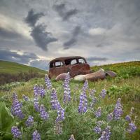 Gorge Spring Df01244 by GrahamWelland