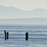 Vancouver Island Preshots by GrahamWelland in GrahamWelland