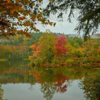 New England Pond 2019 by GrahamWelland in GrahamWelland