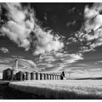 Palouse-staley-grain-silos-irbw-1k-framed by GrahamWelland in Regular Member Gallery