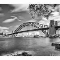Bridge From Kirribilli by GrahamWelland in Regular Member Gallery