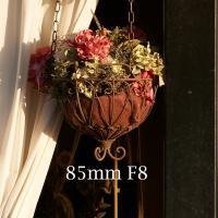 85mm F8 by Guy Mancuso