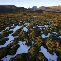 Cradle Mtn, Tasmania by Robblakers in Regular Member Gallery