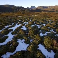 Cradle Mtn, Tasmania by Robblakers