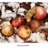 fall by Bill Caulfeild-Browne