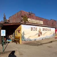 Big Bronco by Guy Mancuso
