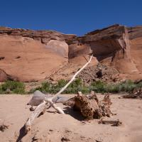 Northern Arizona Workshop by Guy Mancuso