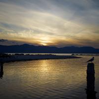Salton Sea Workshop by Guy Mancuso