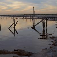 Salton Sea Workshop
