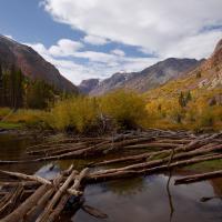Yosemite Workshop 2010