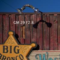 gm 29 28 by Guy Mancuso