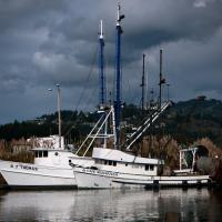 Oregon Workshop Gf1 by Guy Mancuso