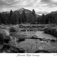 Yosemite Workshop 2010 by Guy Mancuso