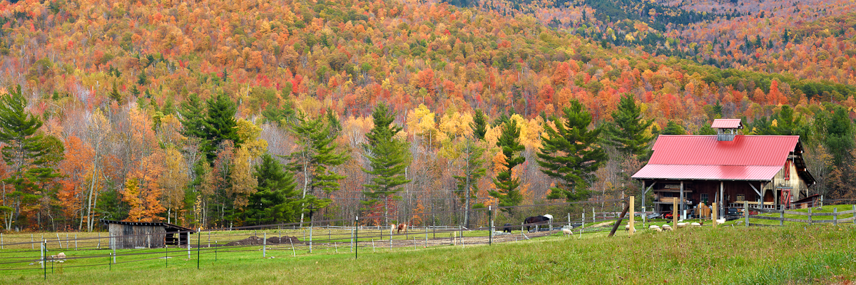 Adirondack Farm In Autumn by WWLEE in Regular Member Gallery