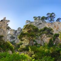 Calquandes De Cassis 2 by jerome in Regular Member Gallery
