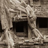 2005 10 11 Bl Angkor 030-bw by JimCollum in Jim Collum