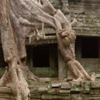 2005 10 11 Bl Angkor 030-cvt2 by JimCollum in Jim Collum