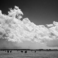 Texas Prairie Storm by johnastovall in johnastovall