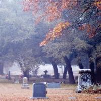 Fog and Fall Colors by johnastovall