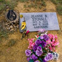 Slowly Closing The Circle... by johnastovall in Cancer Ward