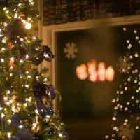 Christmas Tree Mirrored by johnastovall in johnastovall
