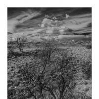 105865 by Landscapelover