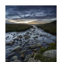 dsc1768 p copy 5046 by Landscapelover
